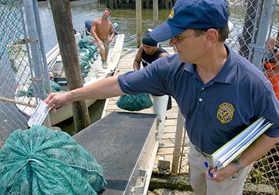 Depurazione e controlli dei molluschi bivalvi