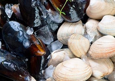 Molluschi bivalvi: cozze e vongole
