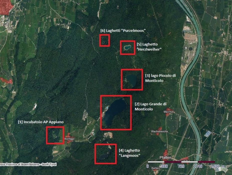 Fig. 1: Compartimento dei laghi di Monticolo