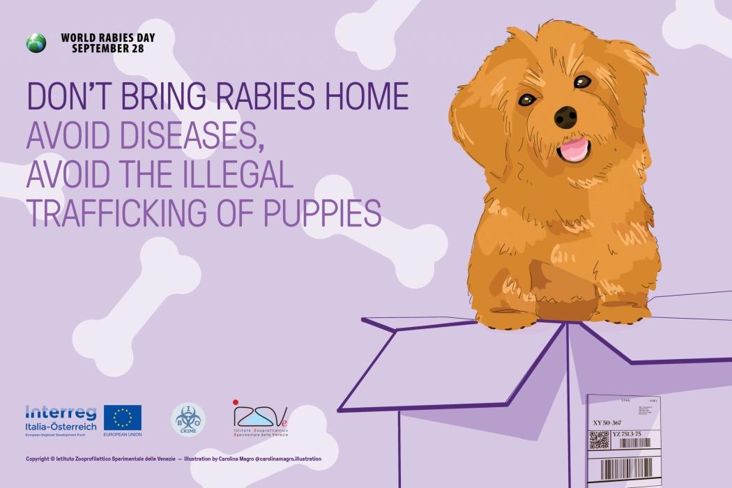 World Rabies Day 2020 - tovaglietta ENG