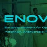 ENOVAT: una rete europea per l'ottimizzazione dei trattamenti antimicrobici in ambito veterinario