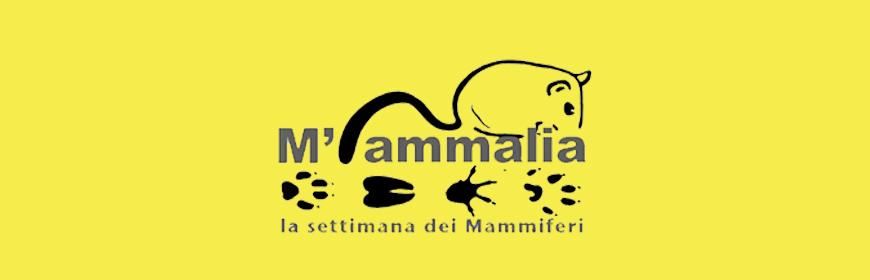 """L'IZSVe a """"M'ammalia 2020"""", la Settimana dei Mammiferi"""