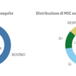 Antibiotico-sensibilità, aggiornato il report pubblico sulla misurazione della minima concentrazione inibente (MIC)