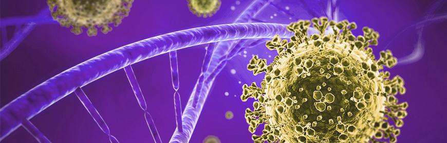 Aggiornamento sulle caratteristiche genetiche di SARS-CoV-2 identificati in Veneto (2)