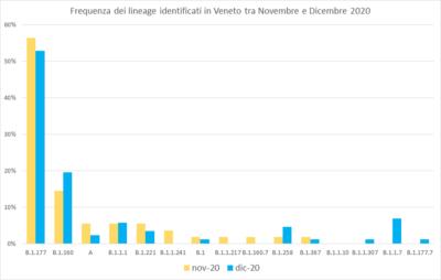 Figura 4. Frequenza dei diversi lineage identificati in Veneto