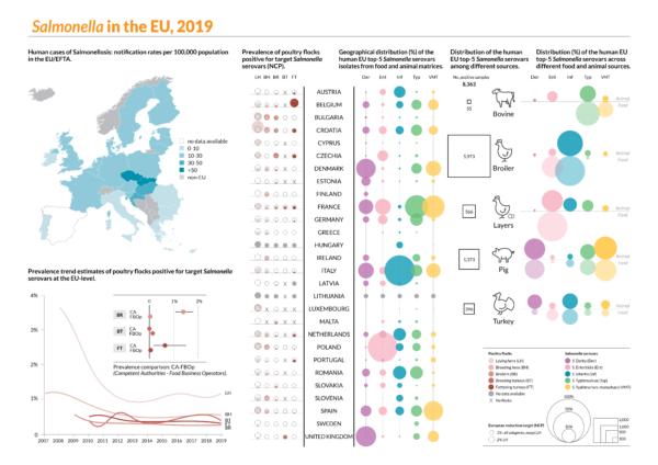 Infografica Salmonella in Europa, 2019