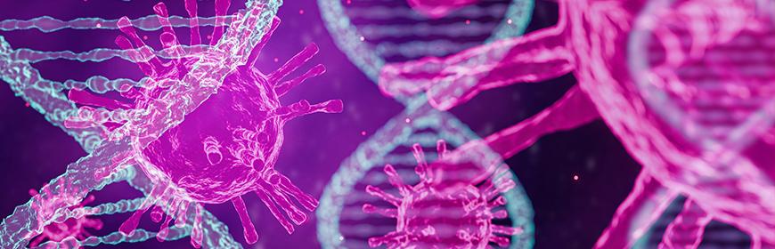 Sorveglianza genetica di SARS-CoV-2 in Veneto. Riepilogo dell'attività svolta dall'IZSVe su mandato della Regione Veneto