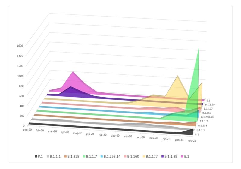 Figura 2. Distribuzione mensile dei principali lineage circolanti in Italia sulla base dei genomi completi disponibili.