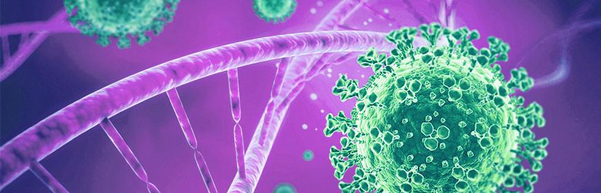 Aggiornamento sulle caratteristiche genetiche di SARS-CoV-2 identificati in Veneto (5° aggiornamento)