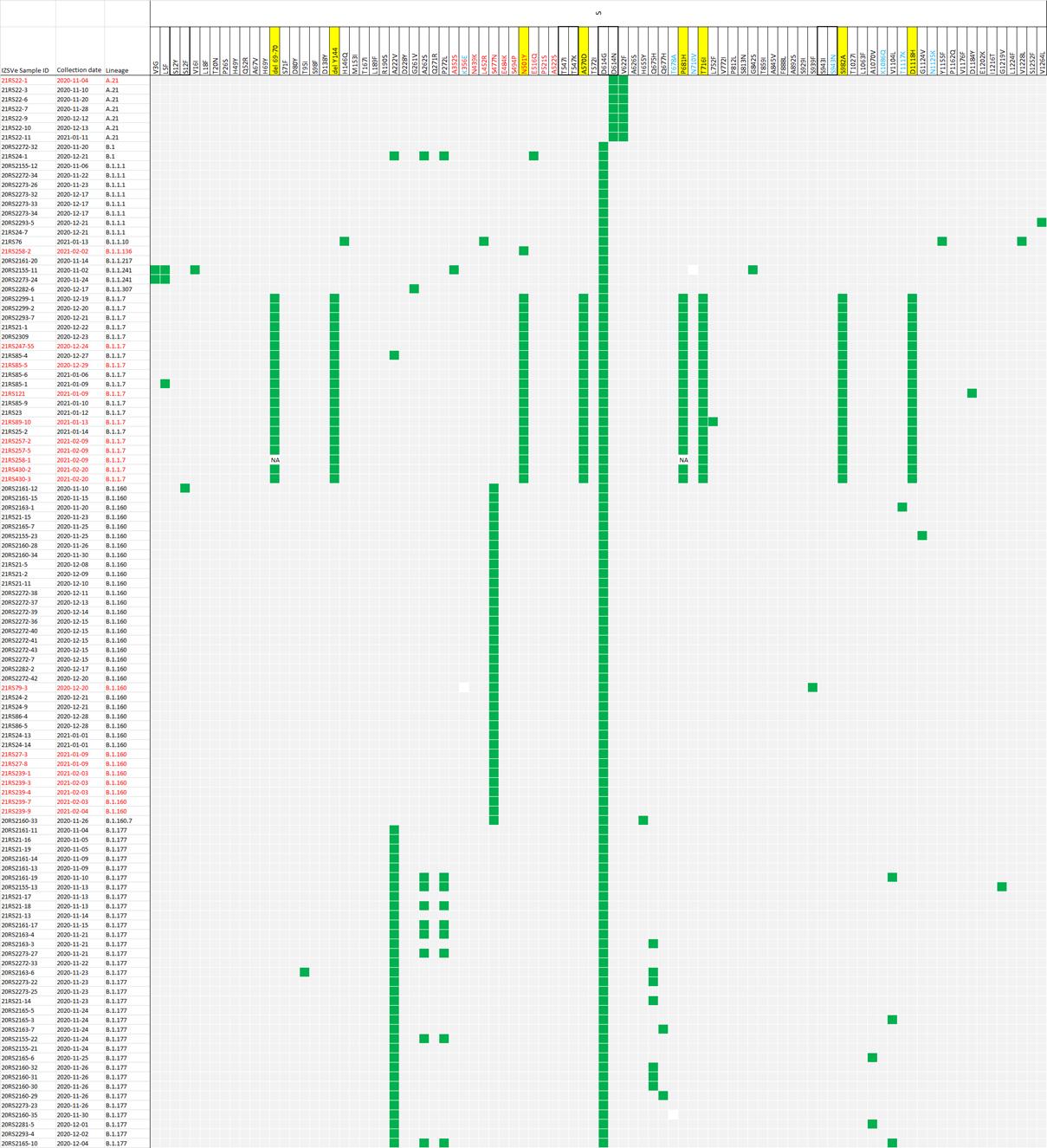 Figura 4. Heatmap delle varianti amminoacidiche identificate nella proteina Spike dei campioni analizzati da Novembre 2020