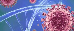Aggiornamento sulle caratteristiche genetiche di SARS-CoV-2 identificati in Veneto (6° aggiornamento)