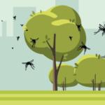 IZSVe e Rete Città Sane uniti per combattere le zanzare