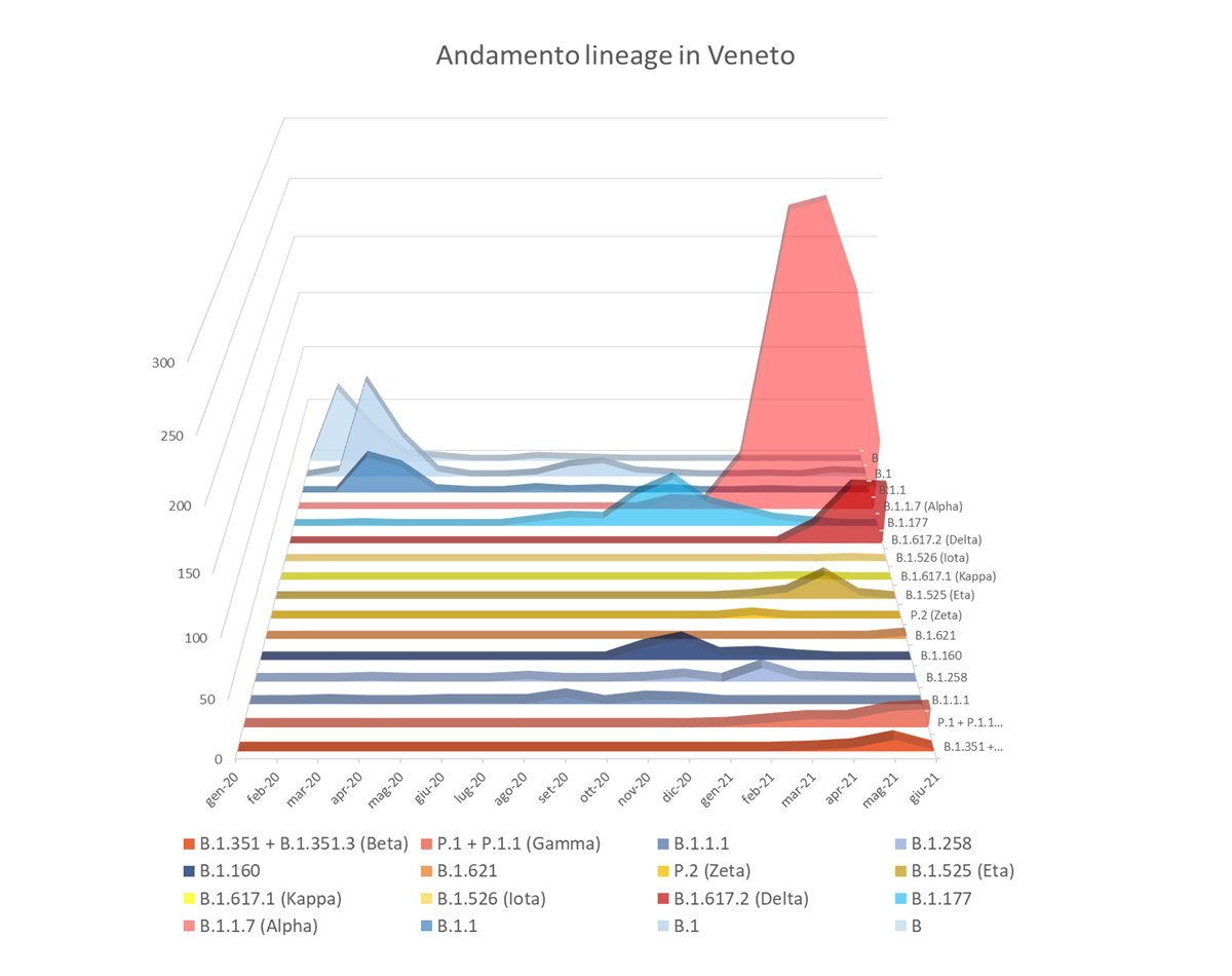Figura 1. Grafico dei principali lineage identificati in Veneto da gennaio 2020 a giugno 2021. Nell'asse delle ordinate è riportato il numero di sequenze del genoma completo per ciascuna variante.