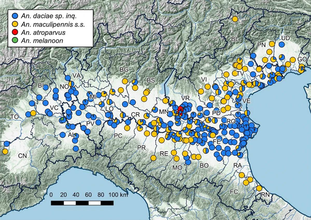 Mappa distribuzione zanzare maculipennis nella Pianura Padana