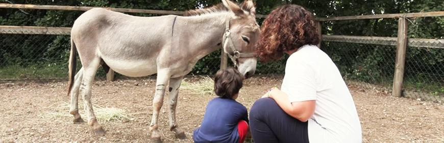 Cosa sono gli Interventi assistiti con gli animali (IAA)? [Video]