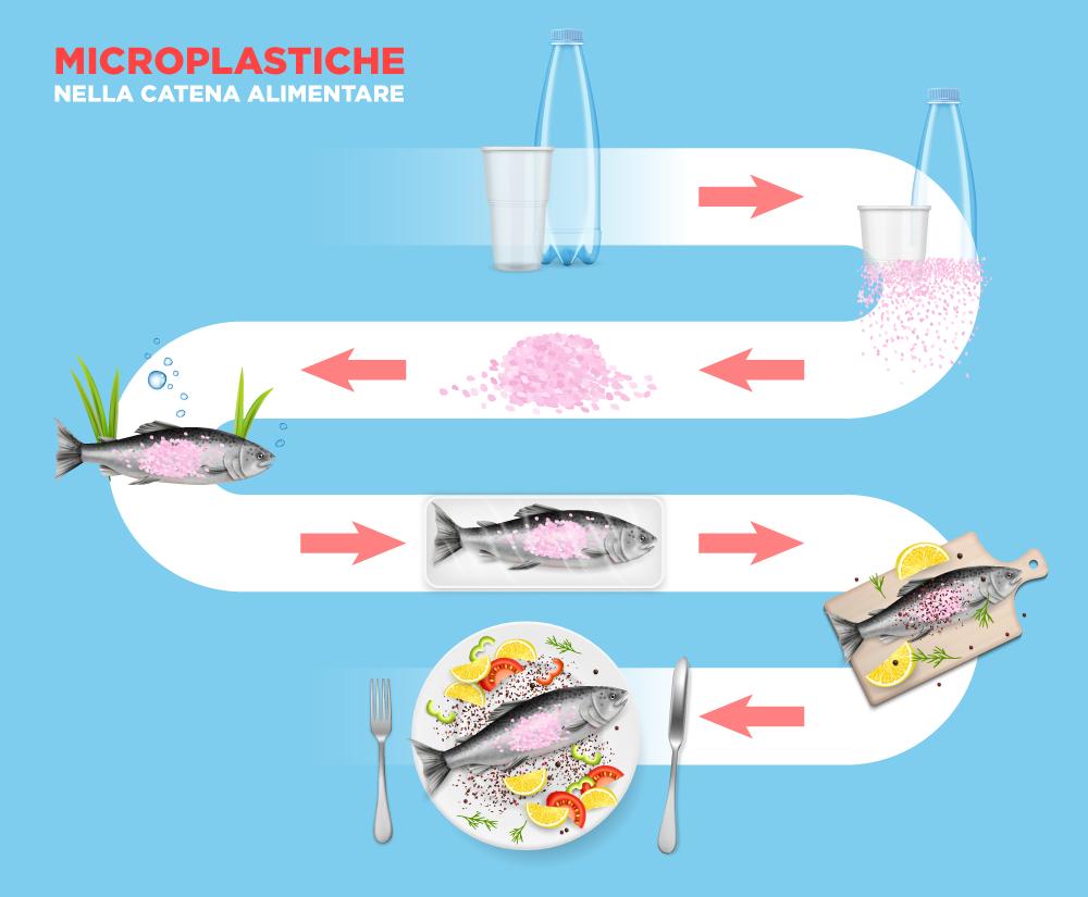Microplastiche nella catena alimentare