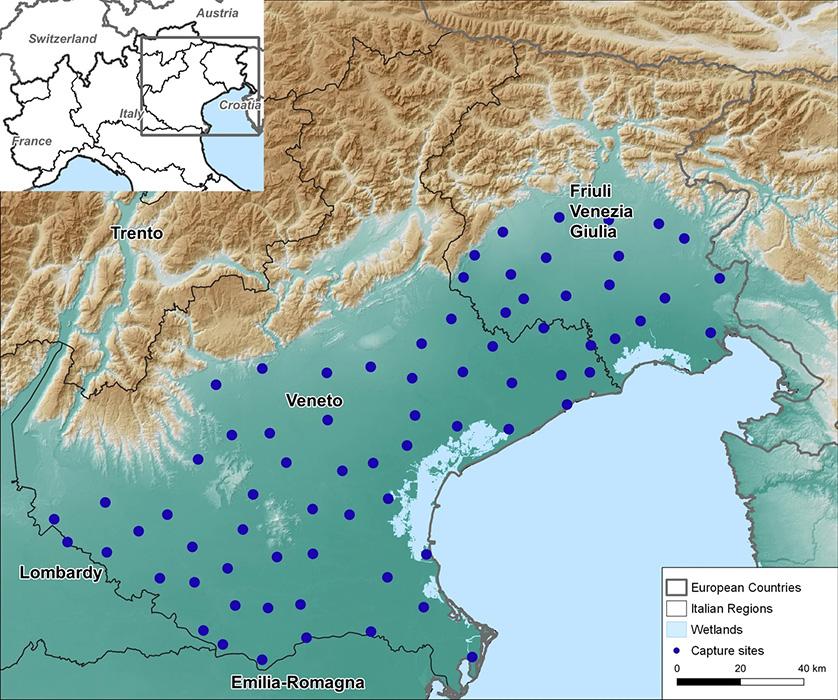 mappa trappole per sorveglianza west nile, nord est italia, 2019