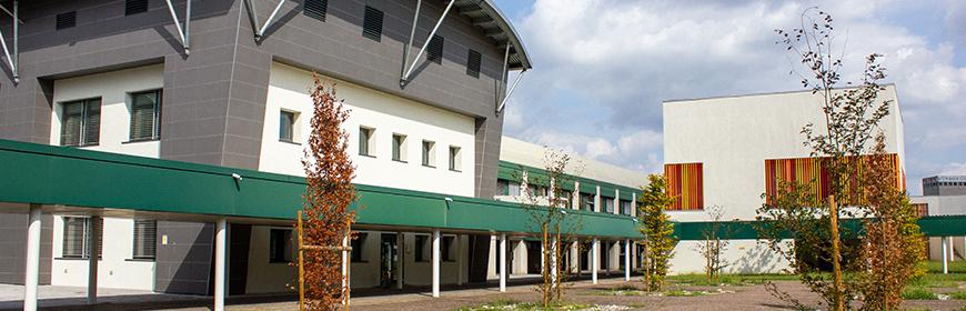 Area tecnico-sanitaria   IZSVe