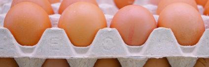 Efsa: prolungare la data di scadenza aumenta il rischio per il consumatore, a meno che le uova non vengano refrigerate