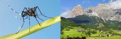 Zika virus: le aree alpine in Italia sono a basso rischio di diffusione