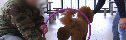 L'efficacia della terapia assistita coi cani. I risultati di uno studio pilota in carcere