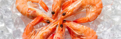 Vibrio spp. nei crostacei: quali rischi per il consumatore?