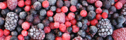 Comunicare ai giovani il rischio Epatite A da frutti di bosco [linee guida]