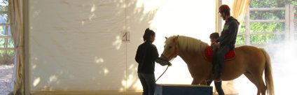 """Convegno """"Riabilitazione equestre: Relazione e Progettualità"""", giovedì 22 marzo a Brescia"""