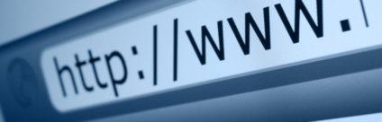 Sito web IZSVe. Risultati dell'indagine di gradimento