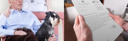 Chiarimenti sulle figure professionali negli Interventi assisititi con gli animali