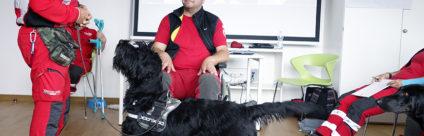 Necessaria l'iscrizione all'Ordine per operare negli Interventi assistiti con gli animali